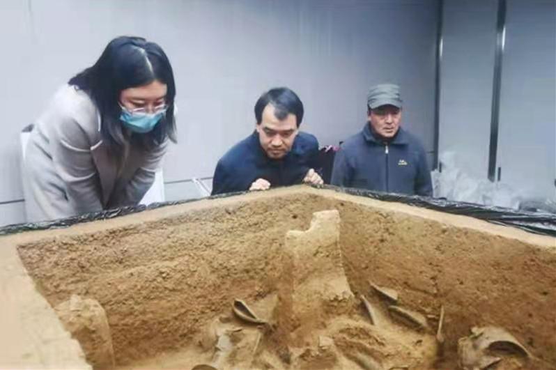 二里头遗址发现高规格夏代墓葬 首次发现蝉形玉器