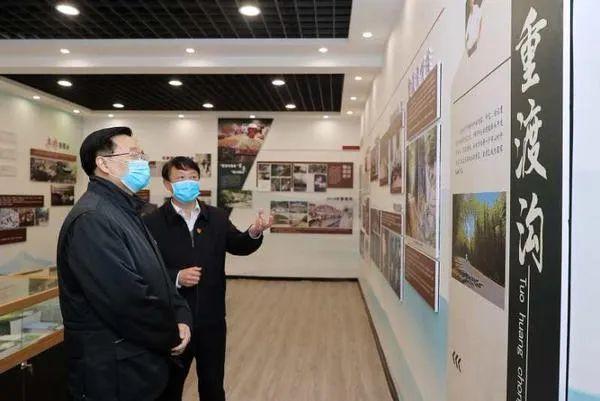 王国生:以旅游业为支撑搞活沟域经济 推动乡村富起来美起来强起来