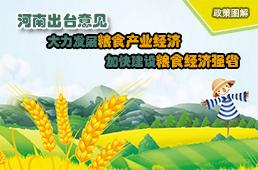 图解:河南出台意见大力发展粮食产业经济加快建设粮食经济强省