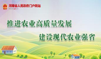 推進農業高質量發展 建設現代農業強省
