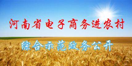 河南省电子商务进农村综合示范政务公开