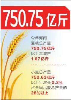 750.75亿斤!今年河南夏粮产量再创新高