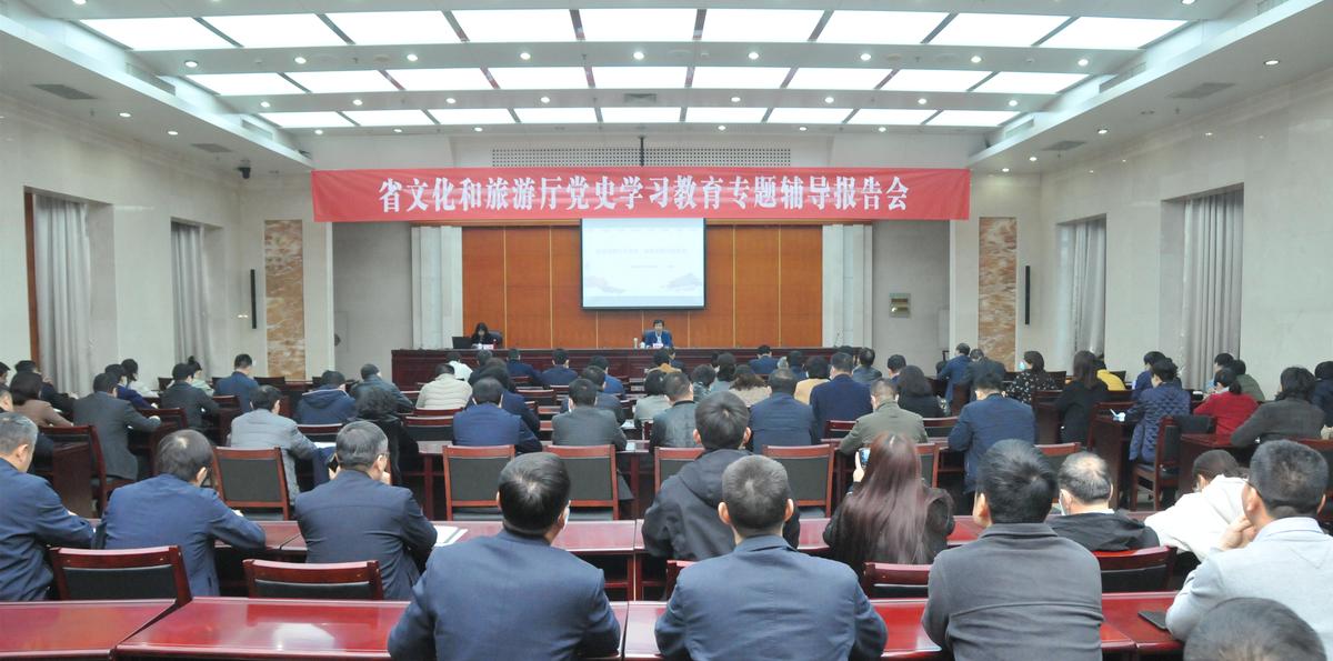 河南省文化和旅游厅举办党史学习教育专题辅导报告会