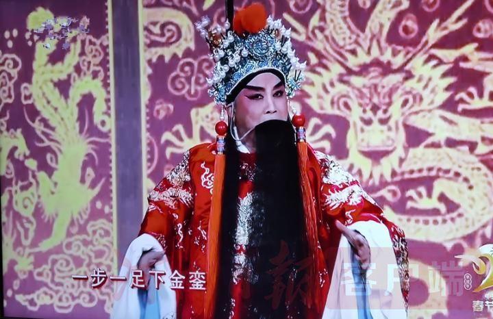 """""""河南戏""""唱响央视春晚"""