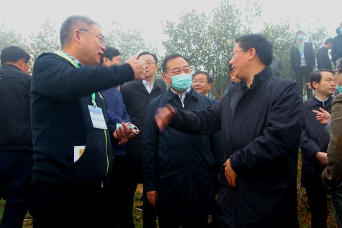 图/文:全国油茶产业发展现场会在光山召开