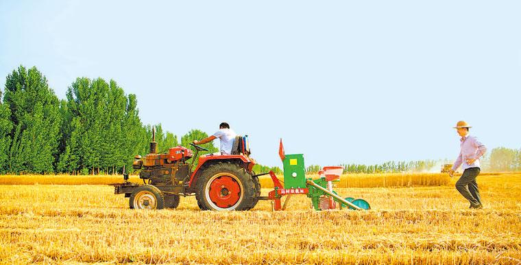 """保障农资供给 确保""""三夏""""生产顺利开展"""