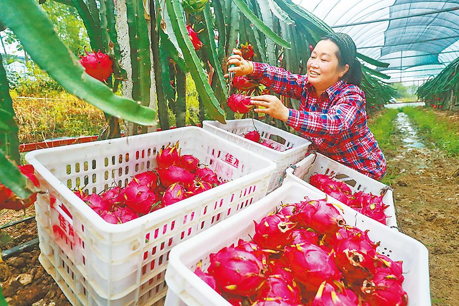 多彩農業 助農增收