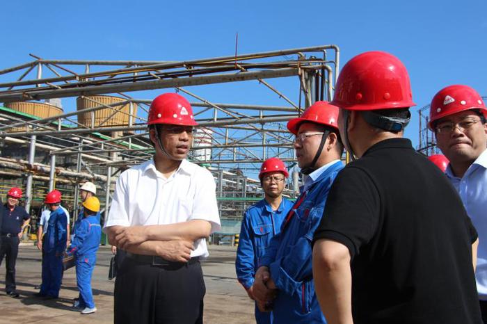 国务院安委办第一检查组到河南检查指导<br>硝酸铵生产企业安全生产工作