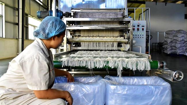 【图片新闻】河南辉县:红薯深加工产业助脱贫