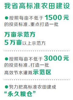高标准农田建得好 河南省连续两年获国务院督查激励