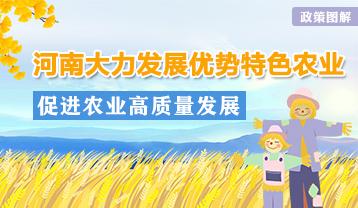 圖解:河南重點建設十大優勢特色農業基地
