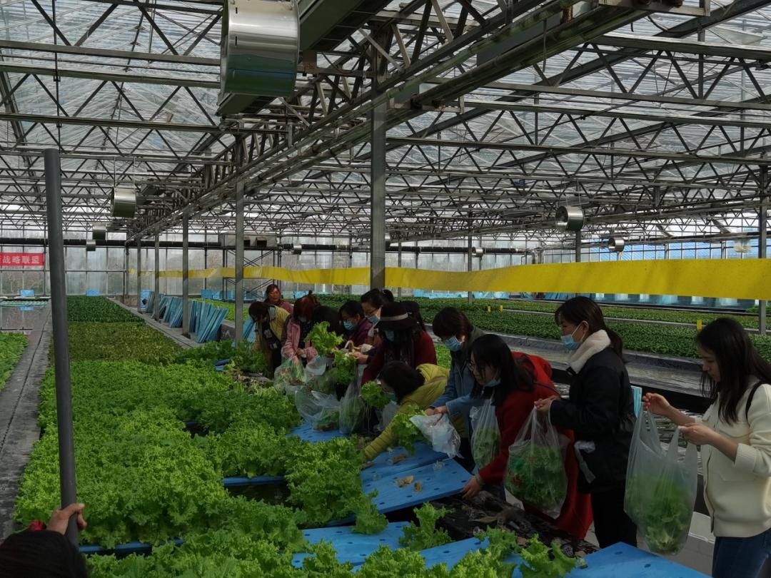 """省发展改革委在""""三八""""妇女节开展""""亲近大自然 走进农科院""""现代农业体验活动"""