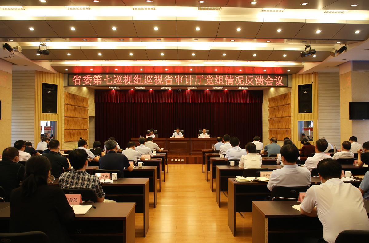 河南省委第七巡视组向省审计厅党组反馈巡视情况