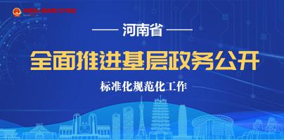 河南省全面推進基層政務公開標準化規范化