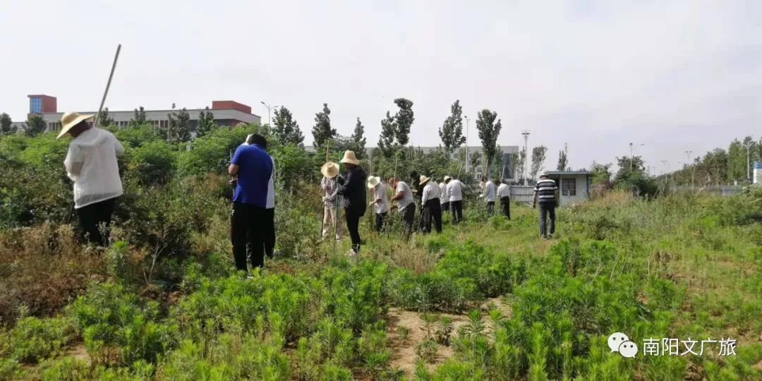 南阳市优化营商环境考古改革工作正式启动