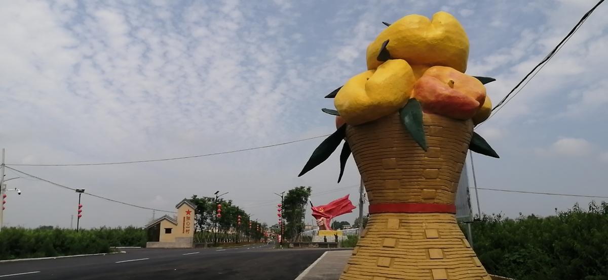 唐河县:油蟠桃特色种植助推脱贫攻坚