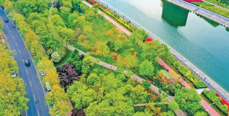 生态绿道 扮靓绿城