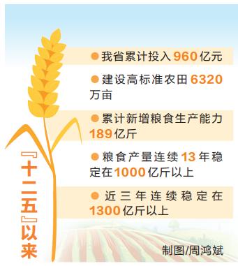 河南省大力打造全國重要的糧食生產核心區,到2025年全省將建成八千萬畝高標準農田