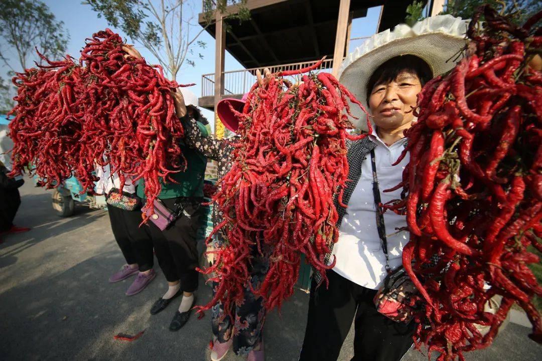 2020年中国农民丰收节河南主会场缘何设在开封