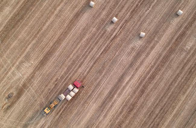 """现代农机""""展雄风"""" 确保小麦""""颗粒归仓"""""""