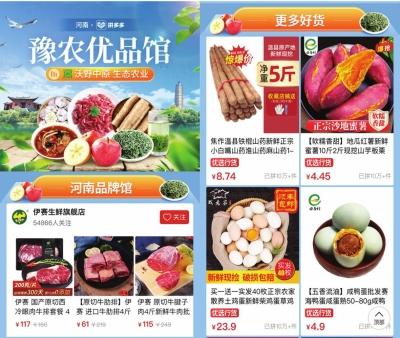 黄浦江畔 开启豫沪农业合作新篇章