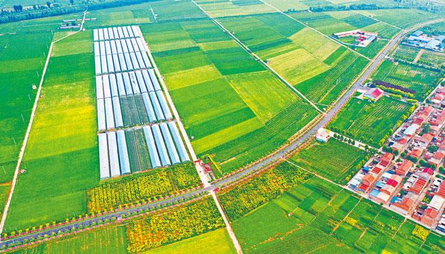 """农田高标准 """"饭碗""""端得稳<br>——关注河南省农业高质量发展之二"""