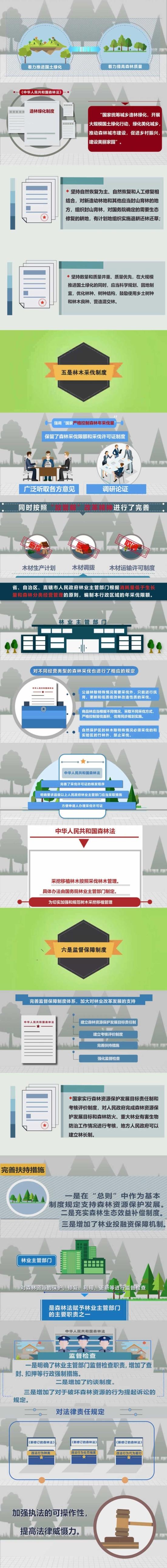 一图读懂新《森林法》 新《中华人民共和国森林法》将有这些变化