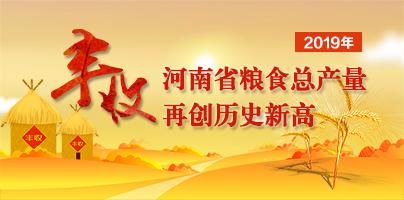 2019年河南糧食總產量再創歷史新高