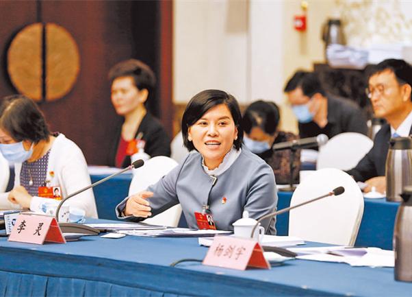 直击会场:河南代表团举行小组会议