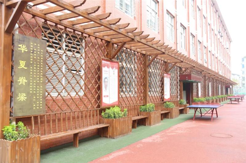 我省中小学校园春景