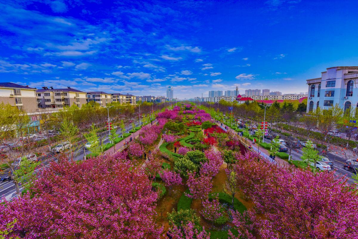 鹤壁市文化和旅游工作成绩及亮点