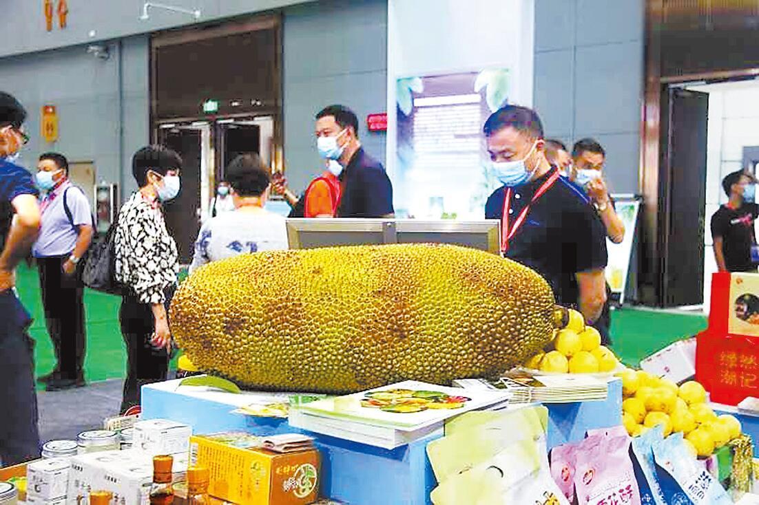 第二十三屆中國農加工投洽會開幕