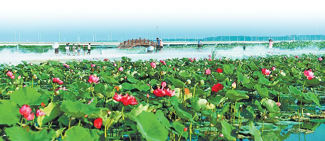 河南省全面启动乡镇国土空间规划编制 建设特色城镇和美丽乡村
