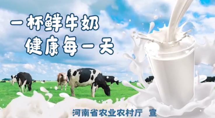 【精简版】一杯鲜牛奶   健康每一天——奶业公益宣传片