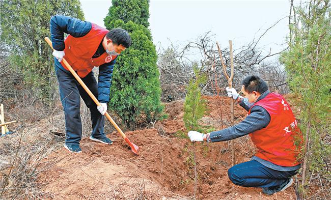植一棵树 造一片林 增一抹绿  今年河南省已造林 215.5万亩
