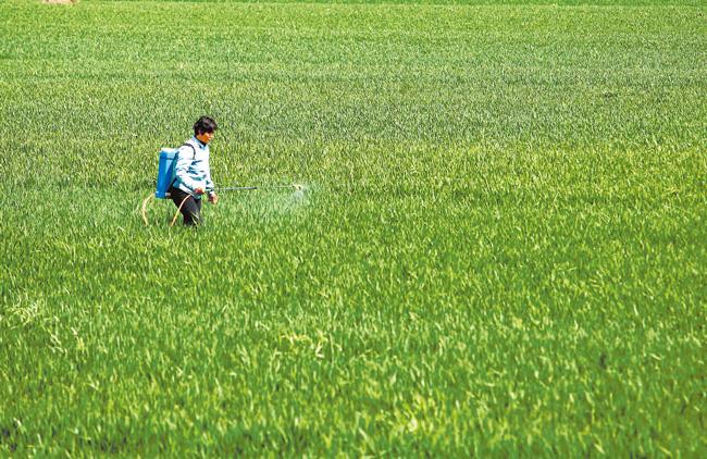 国家统计局河南调查总队专项调查显示,我省春耕备耕期间 农资供应足 种粮热情高