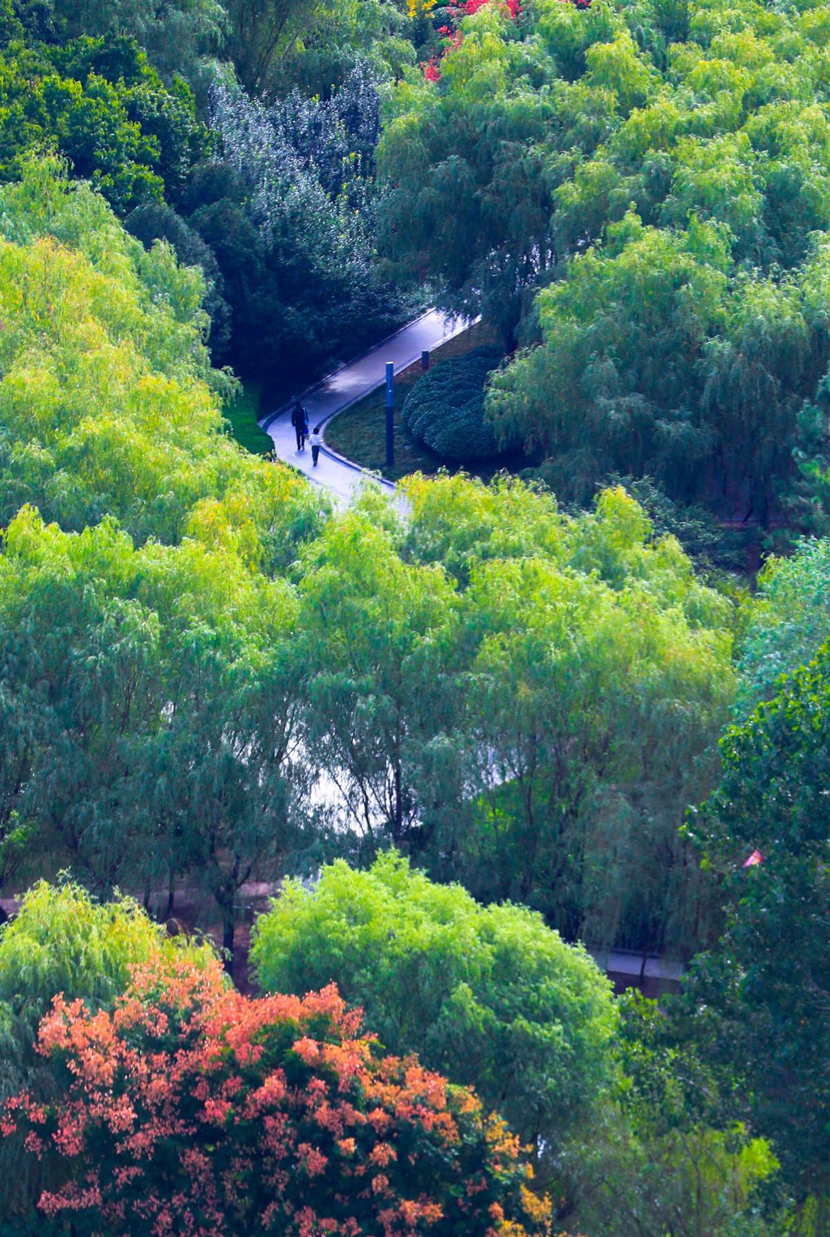 中秋国庆出游总结报告 河南郑州入围长线游十大热门客源地