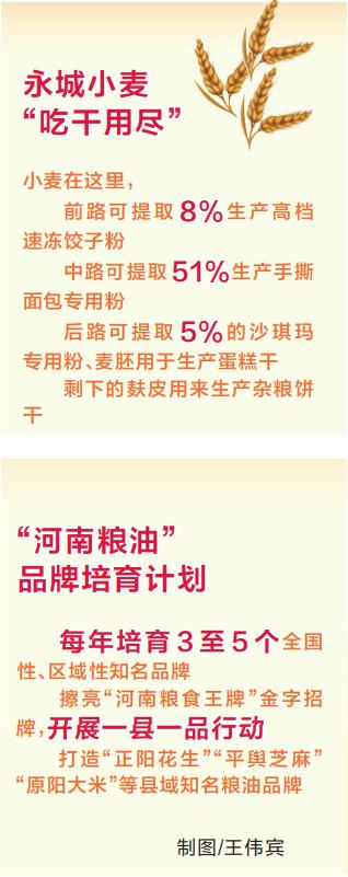 """三链同构 擦亮""""王牌""""<br>——关注河南省农业高质量发展之三"""