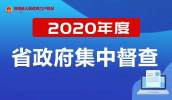 2020年度省政府集中督查