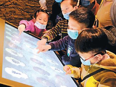 历时5年改造后全面开放,河南博物院—— 焕新更精彩