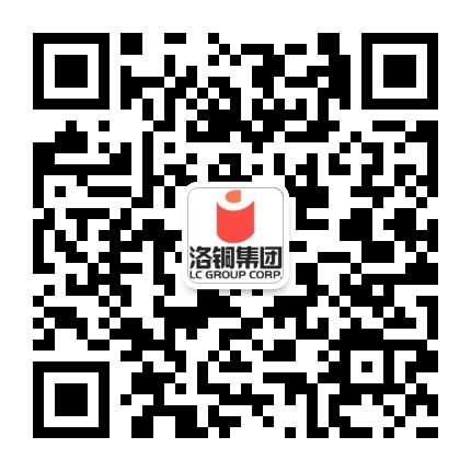 中铝洛阳铜业有限公司