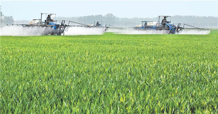 机械化麦田管理