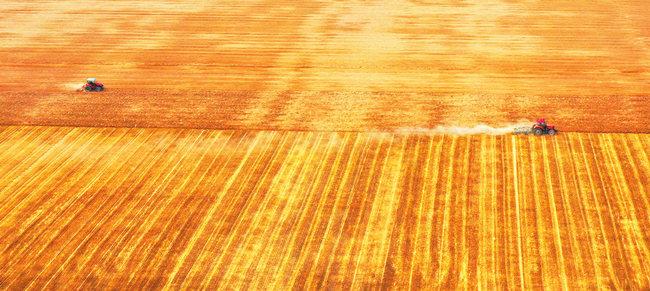 历时20天机收率超过99% 河南省麦收基本结束