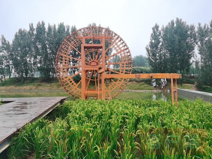 黄河水车.jpg