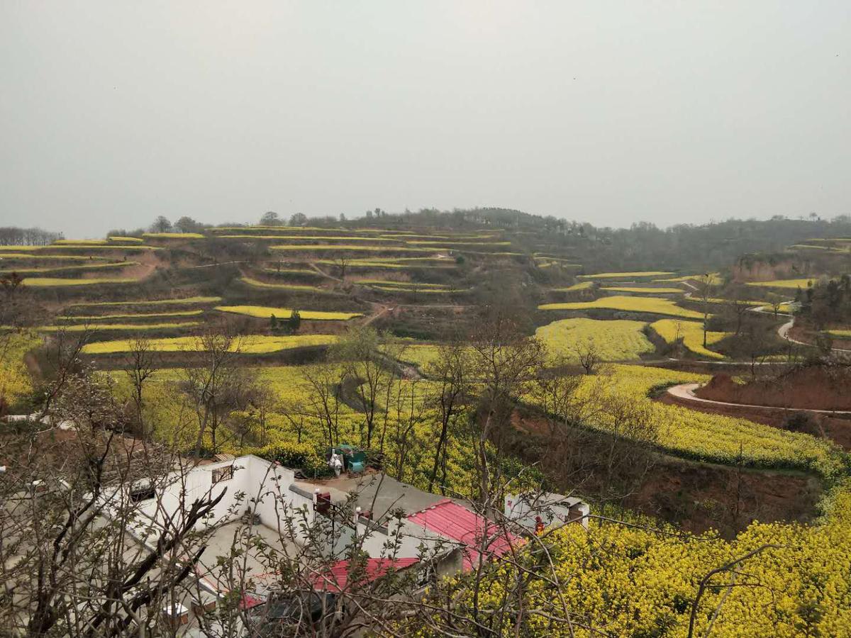 河南省文化和旅游厅党组书记宋丽萍一行 调研新密市乡村旅游和公共文化服务工作