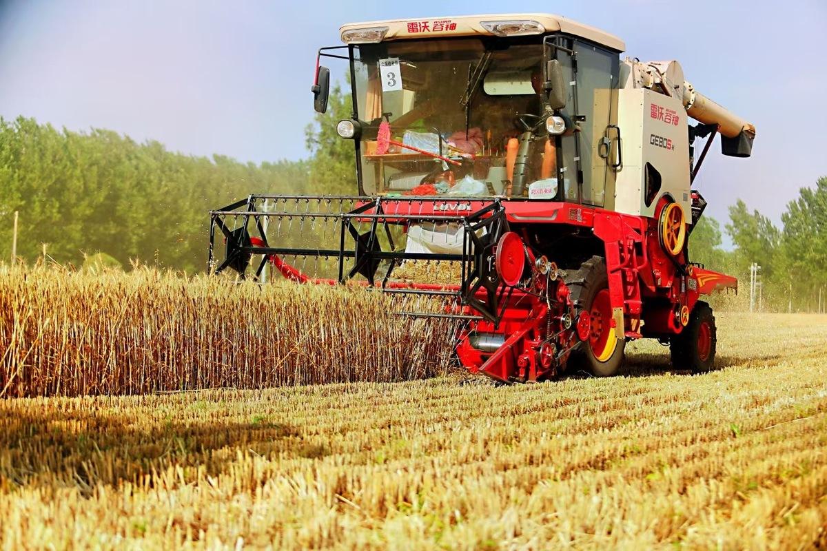 """【奋战""""三夏""""】截止6月9日17时,河南省已收获小麦7540万亩"""