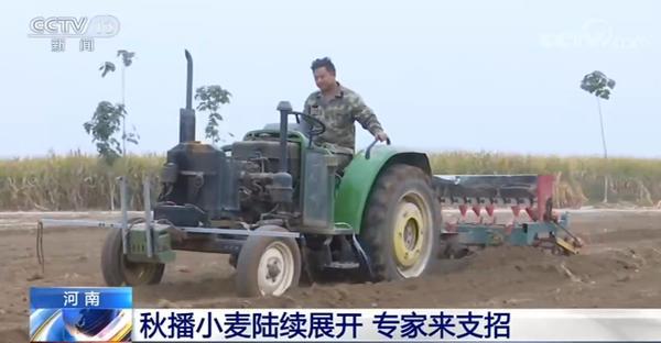 央媒看河南|河南:秋播小麦陆续展开 专家来支招