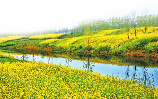 """强化污染源头管控 河南省加快实施""""三线一单""""生态环境分区管控"""