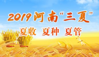 """2019河南""""三夏"""""""