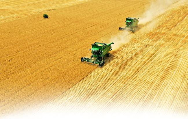 特殊年景的丰收答卷<br>——写在河南夏粮产量再创新高之际